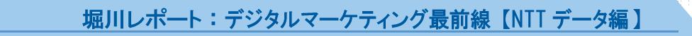 堀川レポート:デジタルマーケティング最前線【NTTデータ編】
